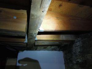 Joist deflection at basement framing